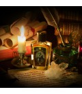 Bat Zoologist Perfumes