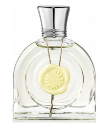 Fleur Lumiere M. Micallef